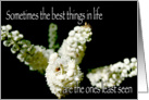 The Best Things in Life are the Ones Least Seen, White floral card