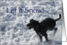 Let it Snow Black Labradoodle Happy Holidays Card