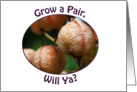 Grow a Pair, Will Ya? pink balls card