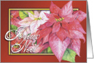 Joyeux Noel, French Christmas Poinsettia Card