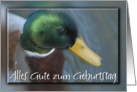 Happy Birthday Duck, German card