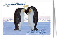 Birthday, for Husband, two penguins card