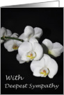 With Deepest Sympathy White Orchid Flower card
