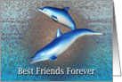 Blue Dolphins Best Friends Forever! card
