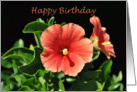 Peach Hibiscus Floral Happy Birthday card