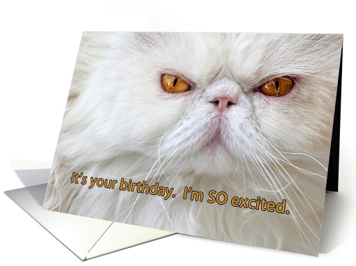 Clicking The Thumbnail Images Below Will Take You To Artists Greeting Card Stores All Of Which Are A Safe And Secure Shopping Environment From