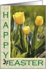Yellow Tulips - Happy Easter Card