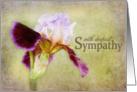 With Deepest Sympathy - Purple and Lavender Iris Flower card