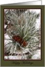 Happy Holidays - Pine cones with frost-blank note card