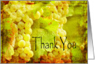 Green Grapes on the Vine Thank You Vintage Card