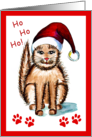 Santa Kitty says have a Meowy Christmas! card