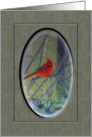 Blank Greeting Red Bird On Tree Branch Digital Painting card