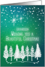 Merry Christmas to Grandson Trees & Snow Winter Scene Pretty card