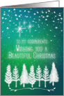 Merry Christmas to Godparents Trees & Snow Winter Scene Pretty card
