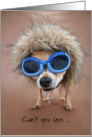Happy Valentine's Day Funny Little Chihuahua Dog Big Glasses card