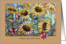 Get Well Soon, Butterflies and Sunflowers card