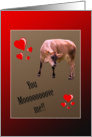 Cow You Move Me Valentine card