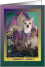 Chihuahua in Mardi Gras Costume Invitation card