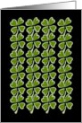 4 Leaf Clovers/Shamrocks for Luck. Blank. card