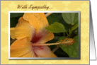 Sympathy�/ Yellow Flower card