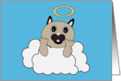 Angel Cat on Cloud Pet Sympathy card