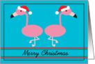 Merry Christmas Pink Flamingos with Santa Hats card