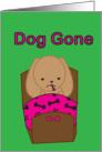 Get Well Soon Sick Dog card