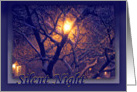 Silent Night Christmas, Snowy Tree Branches in Moonlight card