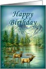 Happy Birthday, Mountains and Elks card