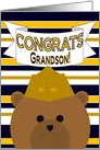 Grandson, Congrats on Earning Your Wings of Gold! - Naval Aviator card