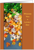 Fall leaves Wishing you a lovely day on Thanksgiving card