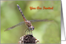 Invitation, Dragonfly on a Flower card