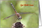 Get Well Soon, Dragonfly on a Flower card