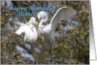 Mother birthday, Egrets Nest Building card
