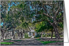 Live Oak Lane Pawleys Island, South Carolina card