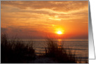 Sunrise at Huntington Beach State Park, Murrells Inlet, SC card