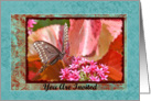 Butterfly and flowers invitation greeting card. card