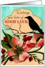 Wishing You Lots of Good luck card