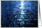 Moonlight On The Cape Fear card