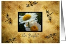 Be Joyful Daisies & Dragonflies card