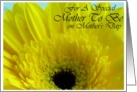 For A Special Mother to Be on Mother's Day Yellow Gerber Daisy card