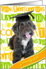 Daughter Graduation Congratulations - Happy Dog card