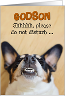 Godson - Funny Birthday Card - Dog with Silly Smile card