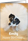 Custom Humorous Birthday Card - Dog Wearing a Tutu card