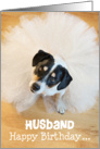 Husband Humorous Birthday Card - Dog Wearing a Tutu card