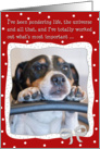 Humorous Christmas Card - Dog Pondering Life,The Universe and All That card