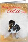 Humorous Christmas Card - Dog Wearing a Tutu card