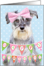 Birthday Card - Miniature Schnauzer Wearing Pink Polka Dot Bow card