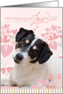 Cute Dog Valentine's Card - How Many Ways Do I Love You card