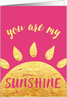 Valentine's Day Card - You Are My Sunshine card